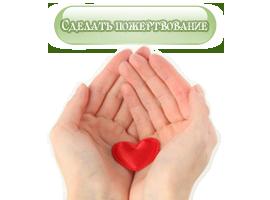 Сделать добровольное пожертвование